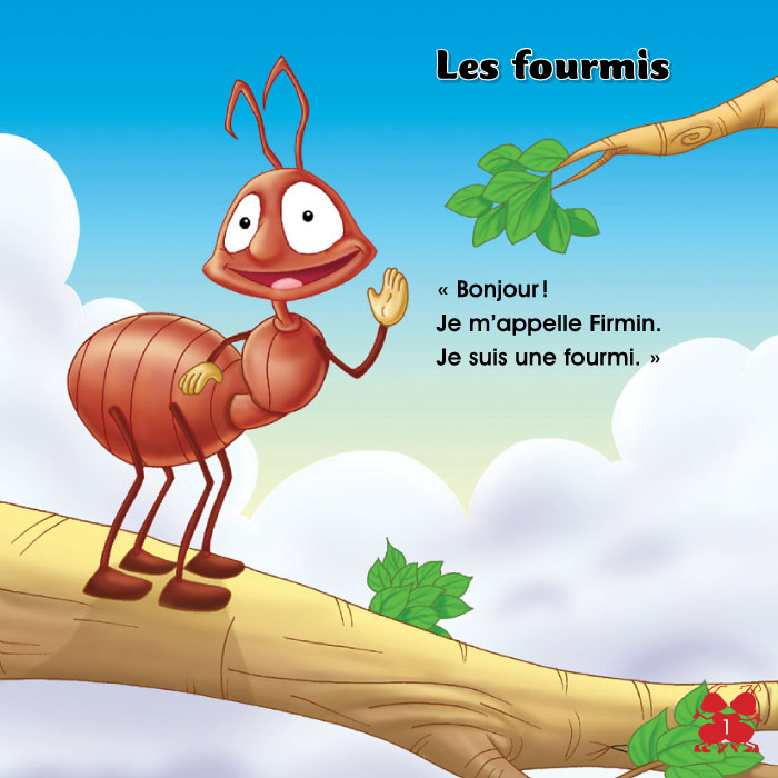 Specimens Les fourmis